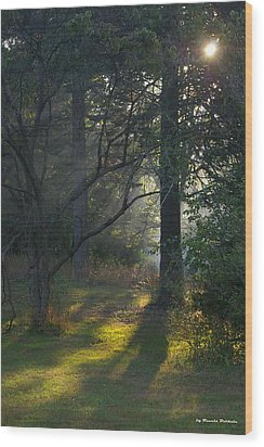 Wood Print featuring the photograph Quiet Morning by Tannis  Baldwin