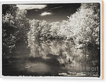 Quiet On The Pond Wood Print by John Rizzuto