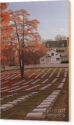 Wood Print featuring the photograph Quiet Respect by Geri Glavis