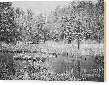 Quiet Storm Wood Print by Sue OConnor
