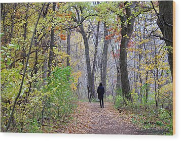 Quiet Walk In The Woods Wood Print