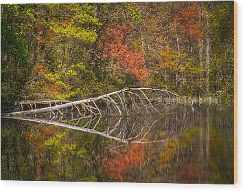 Quiet Waters In Autumn Wood Print by Debra and Dave Vanderlaan