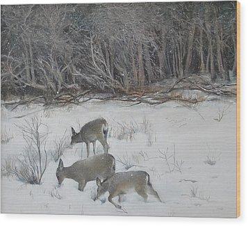 Quiet Winter Day  Wood Print by Terri Ana Stokes