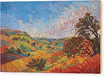 Quilted Color Wood Print by Erin Hanson