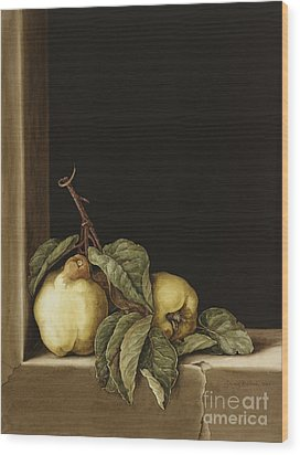 Quinces Wood Print by Jenny Barron