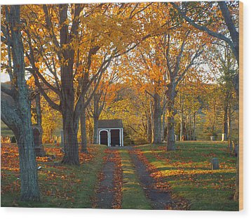 Wood Print featuring the photograph Quivet Morning by Dianne Cowen