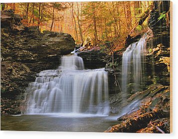 R. B. Ricketts Falls Under Fall's Golden Halo Wood Print by Gene Walls