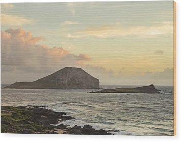Wood Print featuring the photograph Rabbit And Turtle Island At Sunrise 1 by Leigh Anne Meeks