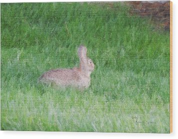 Rabbit In The Grass Wood Print