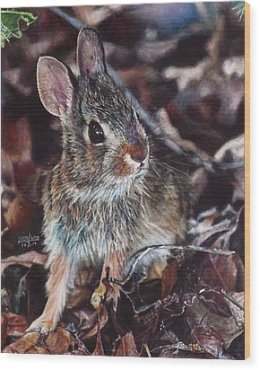 Rabbit In The Woods Wood Print