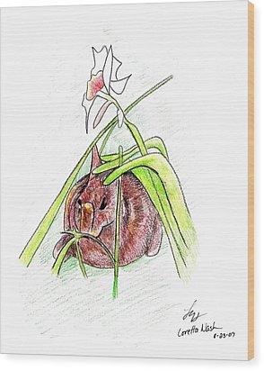 Rabbit Wood Print by Loretta Nash