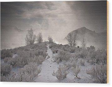 Rabbit Tracks Wood Print by Michael Van Beber