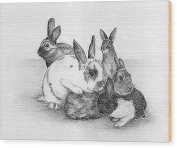 Rabbits Rabbits And More Rabbits Wood Print by Nan Wright