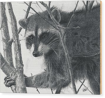 Raccoon - Charcoal Experiment Wood Print