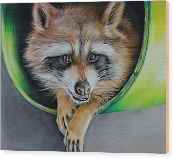 Raccoon  Wood Print by Jean Cormier