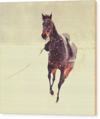Race In The Snow Wood Print by Jenny Rainbow