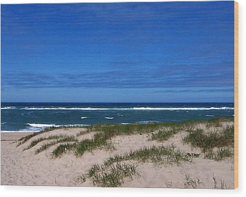Race Point Beach Wood Print by Catherine Gagne