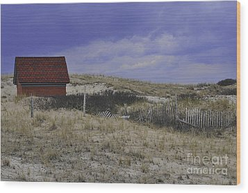 Race Point Light Shed Wood Print by Catherine Reusch Daley