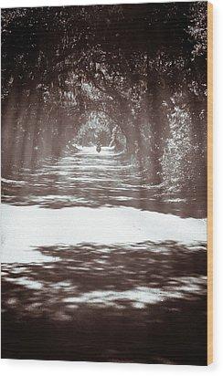 Racin The Wind Chasin The Sun Wood Print by Wade Brooks