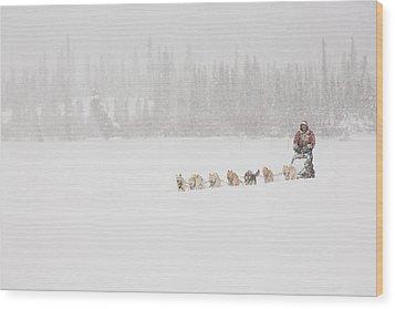 Racing Through The Falling Snow Wood Print by Tim Grams