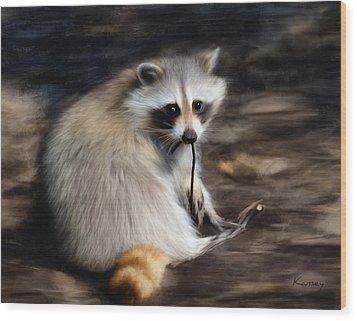 Racoon Wood Print