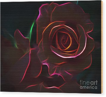 Radiant Rose  Wood Print