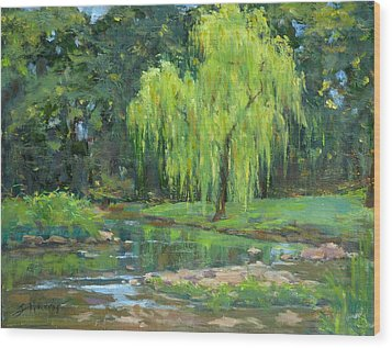 Radiant Willow Wood Print by Sandra Harris