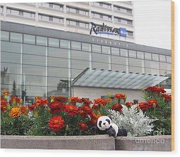 Radisson Blu Lietuva. Baby Panda Likes It Wood Print by Ausra Huntington nee Paulauskaite