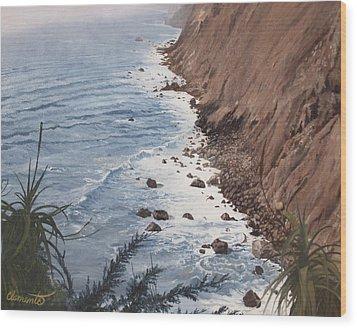 Ragged Point California Wood Print