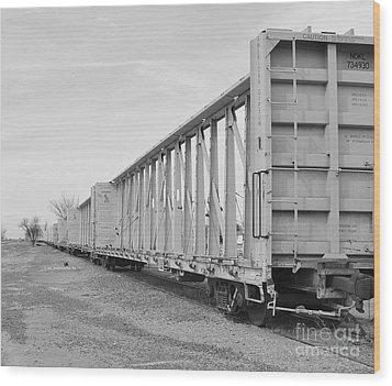 Rail Cars Wood Print