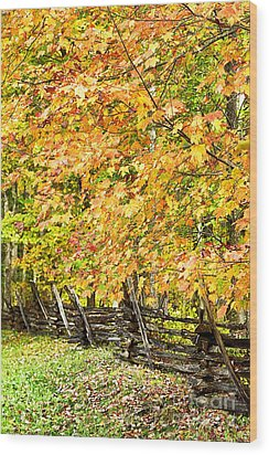 Rail Fence Fall Color Wood Print by Thomas R Fletcher