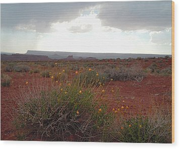 Rain At Monument Valley Wood Print by Heather Coen