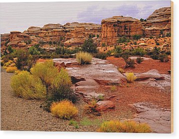 Rain At The Needles District 2 Wood Print by Marty Koch