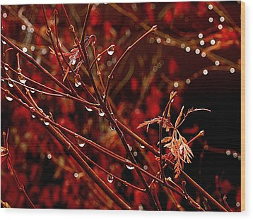 Rain Dance Wood Print by Rona Black