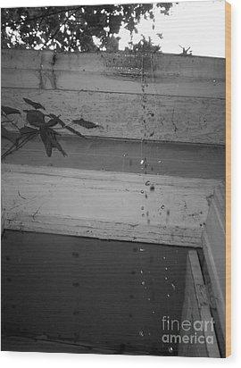 Rain Drops Wood Print by Michael Krek