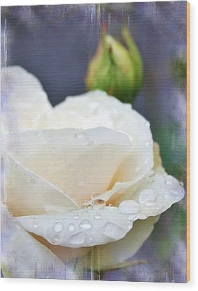 Rain Drops On Roses Wood Print by Cathie Tyler