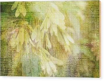 Rain On Leaves Wood Print by Suzanne Powers