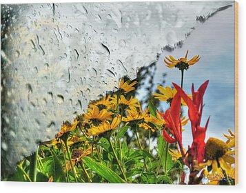 Rain Rain Go Away... Wood Print