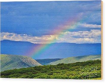 Rainbow Above The Canyon Wood Print by Janice Rae Pariza