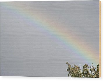 Wood Print featuring the photograph Rainbow After The Rain by Barbara Griffin