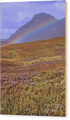 Rainbow And Heather Wood Print by Henry Kowalski