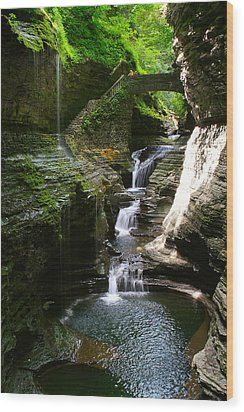 Rainbow Bridge And Falls Wood Print