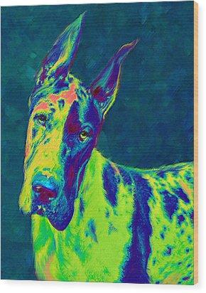 Rainbow Dane Wood Print by Jane Schnetlage