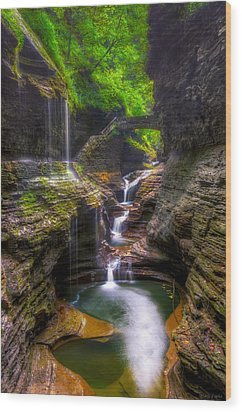 Rainbow Falls Of Watkins Glen Wood Print by Mark Papke