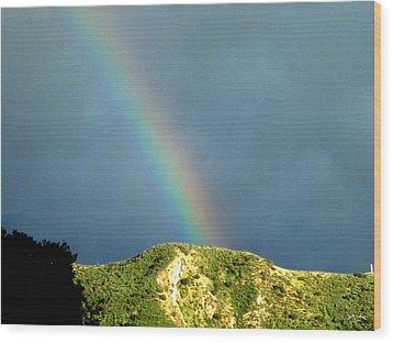 Rainbow I Wood Print