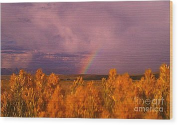 Rainbow In The Plains Wood Print by Chris Tarpening