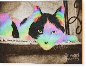 Rainbow Kitty Abstract Wood Print by Andee Design