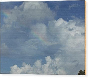 Wood Print featuring the photograph Rainbow by Michele Kaiser