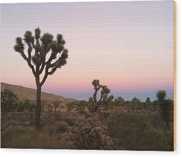 Wood Print featuring the photograph Rainbow Morning by Angela J Wright