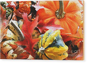 Rainbow Of Autumn Colors Wood Print by Judy Palkimas